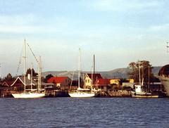 880310 003b Valdivia Marina (rona.h) Tags: chile march 1988 valdivia cloudnine ronah