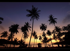 Tropical Sunrise - Ko Samui, Thailand (orvaratli) Tags: ocean travel sea beach sunrise landscape thailand iceland nationalpark marine seasia gulf coconut south palmtree samui tropical tropic kosamui lamai gulfofthailand angthong khosamui arcticphoto rvaratli orvaratli