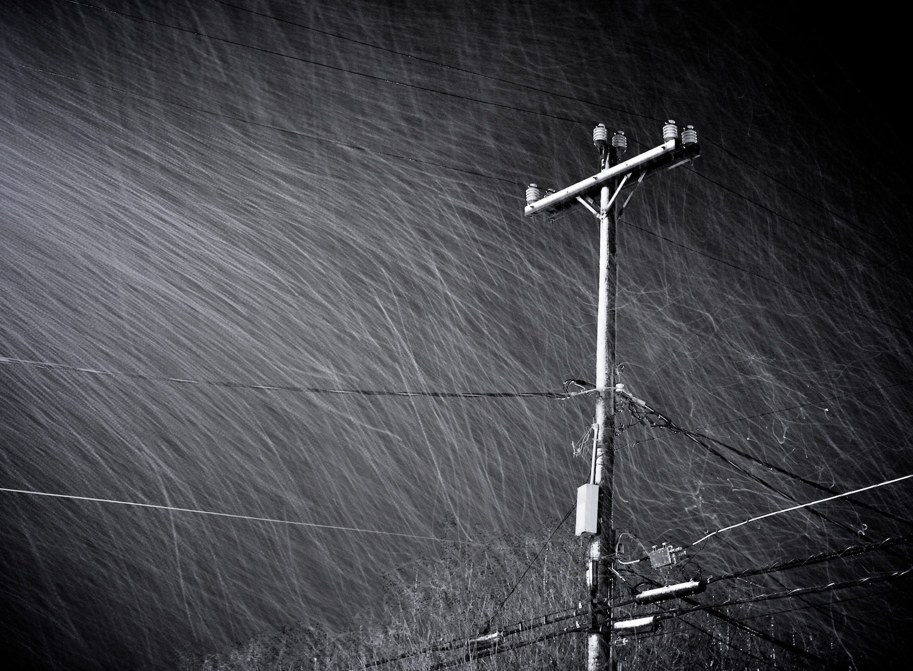 61/365: Winter Continues.