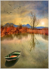 Little Boat (Jean-Michel Priaux) Tags: sunset shadow lake france tree art texture nature water illustration photoshop montagne river painting boat fishing eau flood dream peinture dreaming reflet reflect alsace promenade arbre vosges inondation barque anotherworld tang savage landsape sauvage mattepainting ried marcage priaux superaplus aplusphoto ebersheim muttersholtz ehnwihr digitalflood
