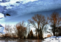 A Frozen Sky (stephanie.keating) Tags: trees winter snow ontario reflection london water thames river frozen spring upsidedown montage thamesriver