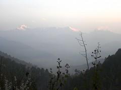 DSCN0260 (oasis_236) Tags: mountains bells hills valley kanda holi almora peachtrees snowpeaks peartrees plumtrees uttarakhand bageshwar