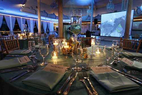 Beta Fish centerpieces aqua linens and lighting AND underwater slideshow in