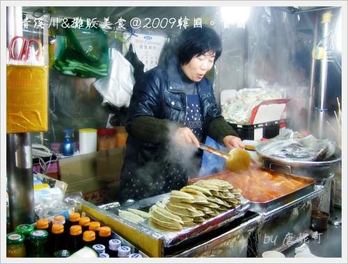 唐妮可☆吃喝玩樂過生活 拍攝的 20091223清溪川與攤販美食_23。