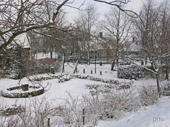 Op bezoek bij.... Zaanse schans (Dita.v.s) Tags: zaanstreek januari2010