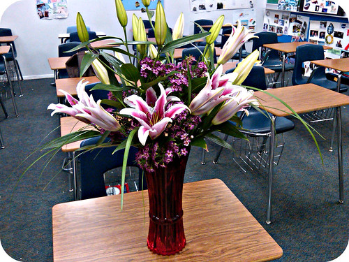 surprise lilies at work! <33