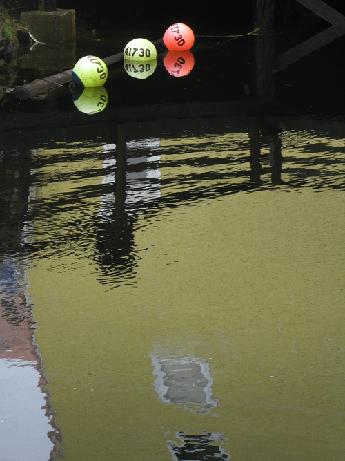 buoys and reflections, Ketchikan, Alaska