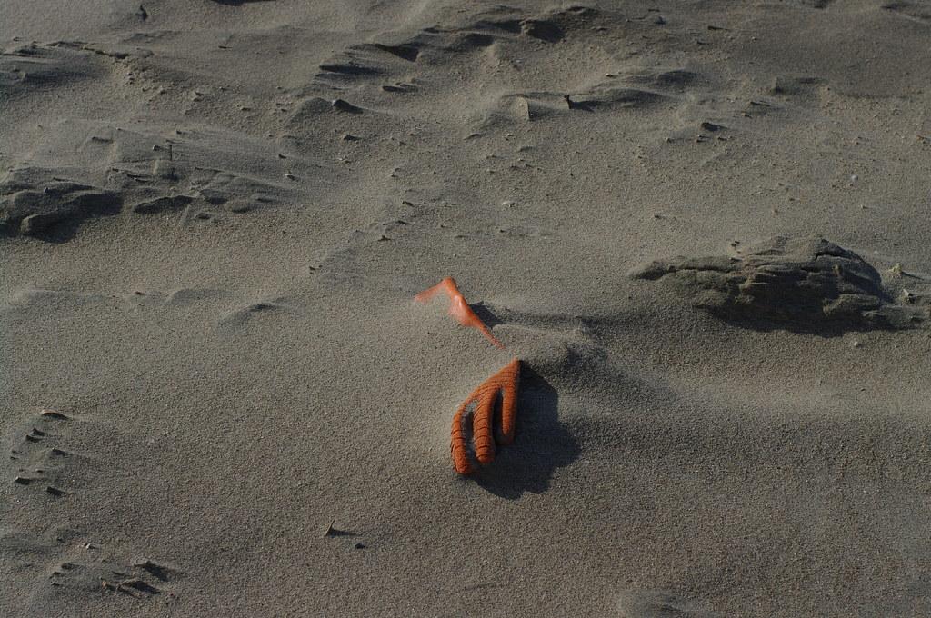 glove on the beach sand