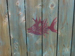 This fish would be a great one for wheat paste art (Kathryn Usher) Tags: louisiana highland publicart shreveport lsus southhighland pamelaraintree highlandandelmwood lamoynebatten