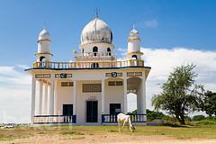 Cham mosque   Kandal Province, Cambodia (bokehcambodia) Tags: white architecture cow cambodia cattle muslim islam religion mosque crescent dome ethnic minority province grazing cham graze kandal