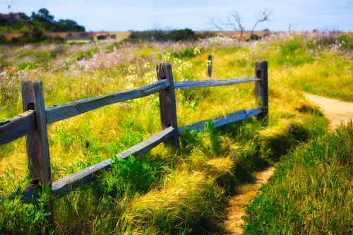 Day 93 - San Elijo Pathway