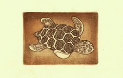 - 001 (tim.spb) Tags: original sea etching turtle postcard small ornament plates desigh    aquafortis