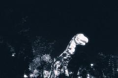 () Tags: statue festival dinosaur 28mm sigma taichung duotone dp1