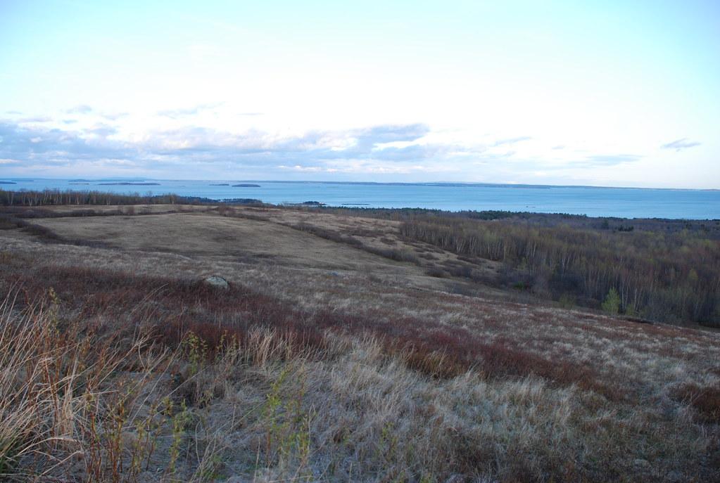 beech hill preserve