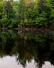 lake reflections (bdaryle) Tags: trees lake green nature water reflections sony brandondaryle bdaryle imagesbybrandon