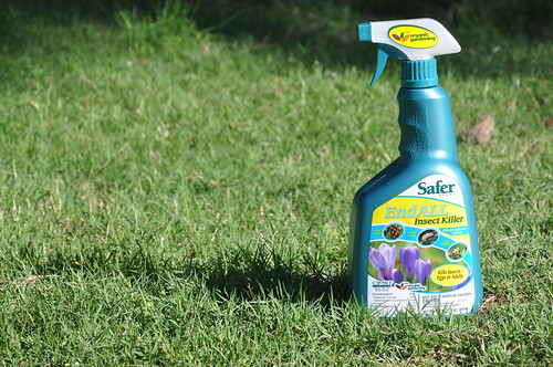 Safer® Brand End ALL Insect Killer