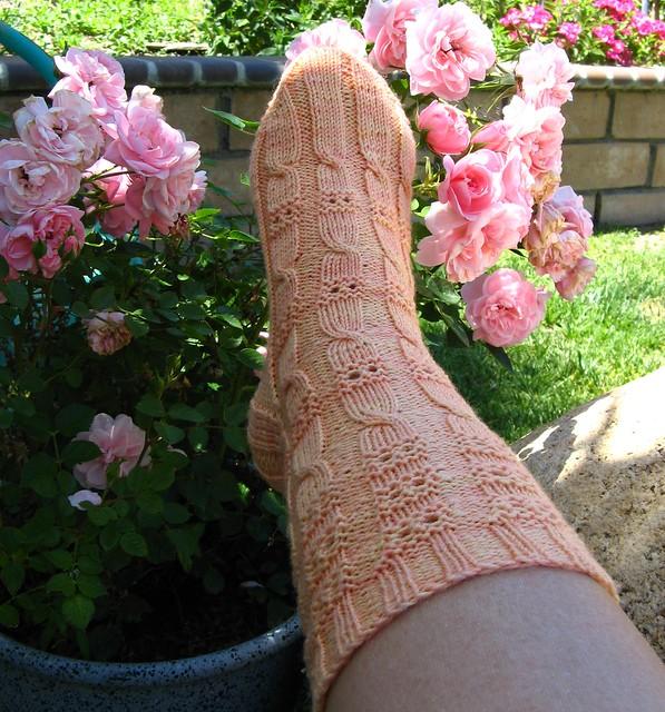 IWinnie Sock107