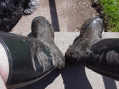 Barefoot in muddy wellies 2 (DONNYB-UK) Tags: black feet boots bare rubber nora barefoot wellies muddy wellingtons