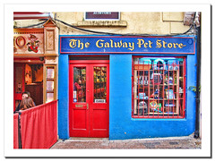 The Galway Pet Store.- (ancama_99(toni)) Tags: pictures door old city trip travel ireland red summer vacation urban irish house color building galway arquitetura architecture photoshop buildings geotagged photography photo rojo arquitectura puerta nikon europa europe cityscape foto photos picture cityscapes photographic eire fotos layers fotografia nikkor vacaciones irlanda 2010 urbanas 1000views  urbanscapes fotografas d60 10favs 10faves nikond60  25favs 25faves mywinners abigfave  holidaysvacanzeurlaub ancama99