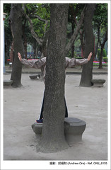 Tree with hands - 228 Park  (AndrewOre ()) Tags: public interesting taiwan taipei     228 steetphotography  andrewore
