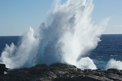 sea_spray2