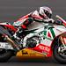 WSBK 2010 - #2 Leon Camier