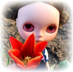 Flower & Flower :)