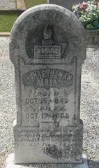 Thomas T Albea