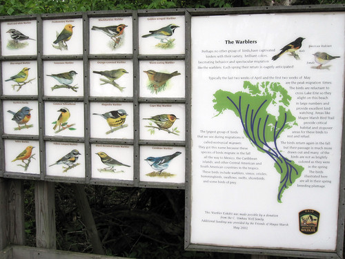 Warbler Sign @ Magee Marsh