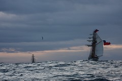 off cape horn (goodwinstudios) Tags: sunrise libertad europa sailing storms tallships rigging sagres capehorn simonbolivar cuauhtemoc guayas furling cisnebranco windjammers velassudamerica regatabincentenario esmerelds