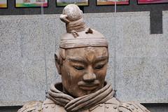 8-05 VISITE DES FOUILLES PRES DU TOMBEAU DE QIN SHI HUANG DI - XIAN - CHINE (15) (hube.marc) Tags: china de du des xian di 805 shi kina cina chine visite qin pres huang tombeau lachin pinyin  chiny kna in fouilles  kiinan qinshihuangdi  na kinija kitajska  na  qnshhungd