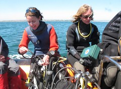 traveling to dive (squeezemonkey) Tags: sea portland boat divers rib cylinders divekit holborndivers