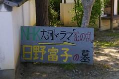 日野富子の墓 #2