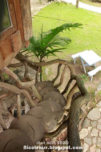 steps down tree house