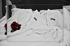 Bathrobes in Love (shallowend) Tags: roses bw hotel virginia daylight bedroom downtown getaway interior room naturallight historic advertisement indoors ambient romantic charming bb bedbreakfast decor staunton bathrobes frederickhouse wwwbriancrouchphotographycom briancrouchphotography