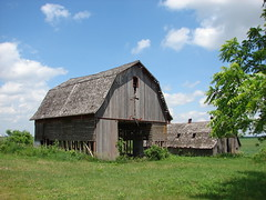 Stripped to the waist (David Sebben) Tags: abandoned barn rural crafts rustic picture iowa robins waist strip framing sidewalls