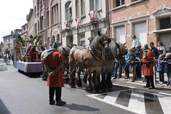 Ros Beiaardommegang (CarolienC) Tags: unesco ros paard paarden dendermonde ommegang rosbeiaard beiaard werelderfgoed rosbeiaardommegang