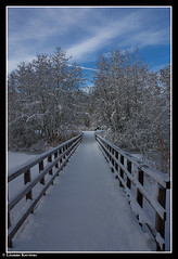 Bridge (lisannekerstens) Tags: park bridge snow utrecht sneeuw nederland thenetherlands brug