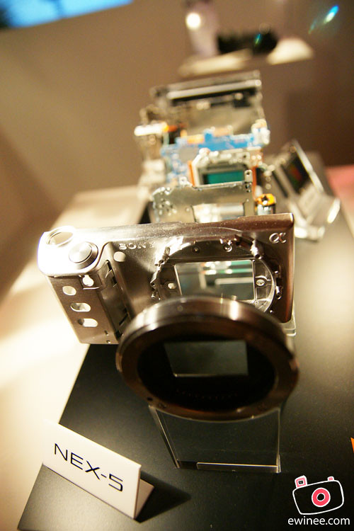SONY-ALPHA-NEX-LAUNCH-TEEQ-LOT10-2010