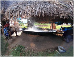 Hidden Land - Marayoor (Naseer Ommer) Tags: canon sandalwood dolmen sugarcane jaggery startortoise marayoor grizzledgiantsquirrel naseerommer canoneos5dmarkii muniyara marayur dpintl discoverplanetinternational sharkkara undasharkkara