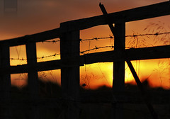Door to Hell (Perolo Orero - www.orerofotografia.com -) Tags: light sunset orange sun color verde green luz sol against valencia field fence contraluz macintosh atardecer photography reja yahoo google nikon gate flickr dof bokeh 14 85mm www final gmail manuel end campo fx sell naranja ocaso d3 vall