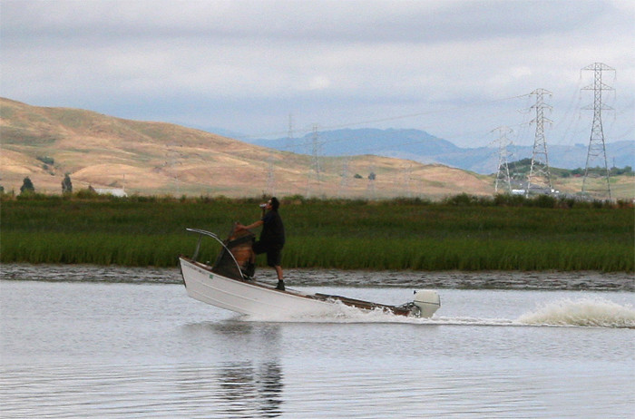 Passing Boater on Petaluma River