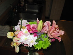 gradGifts05 (mary2678) Tags: flowers burlington university vermont graduation class gift vt uvm 2010 undergraduate