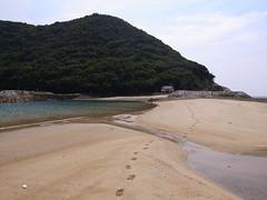 丸山島までは、コンクリートの ...