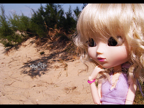 Kite's holiday - Let's go to the beach...