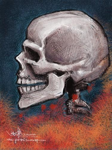 Skull study 2 - brushes