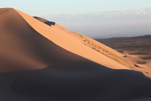 dune face