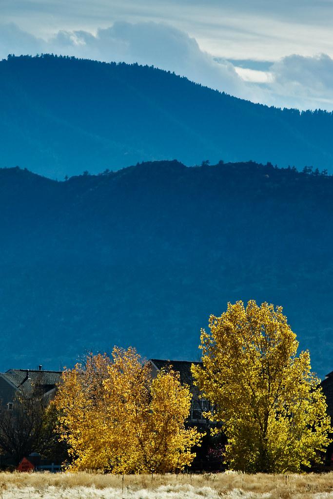 Denver Park Fall Colors #2