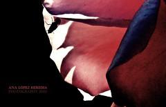 Contraluz (Ana López Heredia) Tags: flowers españa naturaleza color nature shadows rosa sombra bamboo wacom sombras botánica mosca cantabria pentablet konicaminolta instantes dimagez5 delicadeza konicaminoltadimagez5 bamboowacom analópezheredia