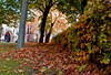 Autumn 3 (Zafar (newatclicking is chewing the cud....)) Tags: g11 canong11 abbey1itemeditdeleteapleycastleapleycastle1itemeditdeleteappleapple1itemeditdeletearchitecturearchitecture2itemseditdeleteartlegacyartlegacy2itemseditdeletebballsballs1itemeditdeletebaskingbasking1itemeditdeletebeebee2itemseditdele canong114itemseditdeletecentrexflowerxbluexgreenxyellowxredxmagentaxcolourxcolorxdepthcentrexflowerxbluexgreenxyellowxredxmagentaxcolourxcolorxdepth1itemeditdeletecherrycherry2itemseditdeletechurchchurch1itemeditdeletecitycit city2itemseditdeletecloseupcloseup1itemeditdeletecloudsclouds11itemseditdeleteclubclub1itemeditdeletecolorcolor1itemeditdeletecolorphotoaward3itemseditdeletecolourcolour8itemseditdeleteddandeliondandelion3itemseditdeletedayday1it dof7itemseditdeletedropdrop5itemseditdeletedropsdrops6itemseditdeleteeenglandengland1itemeditdeleteeveningevening8itemseditdeleteeverydayeveryday1itemeditdeleteexploreexplore1itemeditdeleteexploredexplored1itemeditdeleteeyeseyes1 g119itemseditdeletegetget7itemseditdeleteglassglass1itemeditdeleteglassesglasses1itemeditdeletegodgod1itemeditdeletegoldgold1itemeditdeletegrassgrass1itemeditdeletegreengreen13itemseditdeletegreygrey1itemeditdeletehhandheldhand handheld3itemseditdeletehappyhappy1itemeditdeleteharrodsharrods2itemseditdeletehdrhdr2itemseditdeleteheldheld1itemeditdeletehighlighthighlight1itemeditdeletehillhill1itemeditdeletehillshills1itemeditdeletehistoryhistory1itemeditd london4itemseditdeletelothopelothope7itemseditdeletemmacromacro9itemseditdeletemagentamagenta1itemeditdeletemagicmagic1itemeditdeletemagnifymagnify1itemeditdeletemessmess1itemeditdeletemonochromaticmonochromatic1itemeditdeletem night5itemseditdeletenightsnights1itemeditdeleteoorangeorange3itemseditdeleteorchardorchard1itemeditdeleteoutdooroutdoor3itemseditdeleteovercastovercast1itemeditdeleteoverexposedoverexposed1itemeditdeletepplantsplants10itemseditdel shrewsbury10itemseditdeleteshropshireshropshire shropshire11itemseditdeleteshropshirexshr